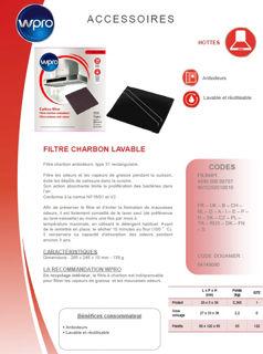 Image sur Filtre à charbon Type 31 - dim 285x245x10 - FIL950/1